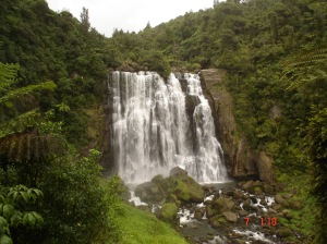 wonderful Waitomo Waterfalls